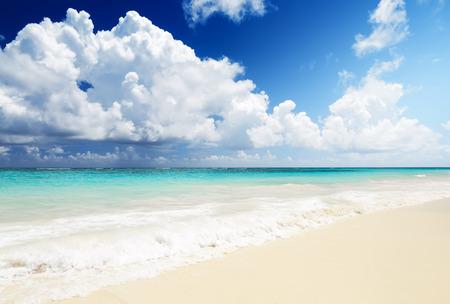 cana: Wave of the sea on the sand beach