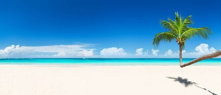 Coconut palm trees against blue sky and beautiful beach in Punta Cana, Dominican Republic. Vacation holidays background wallpaper. Panorama of nice tropical beach. Stock Photo