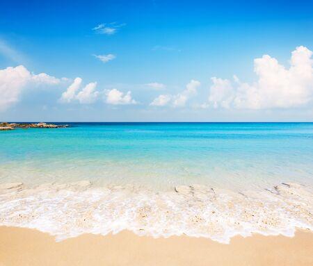 Cocoteros contra el cielo azul y la hermosa playa de Punta Cana, República Dominicana. Fondo de pantalla de vacaciones vacaciones. Vista de una bonita playa tropical. Foto de archivo