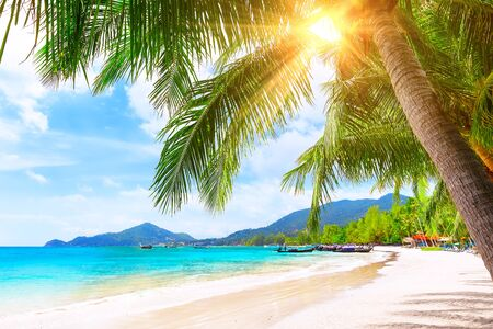 Blue sky and beautiful sand beach in Koh Tao, Thailand. Vacation holidays background wallpaper. View of nice tropical beach. Travel summer holiday background concept.