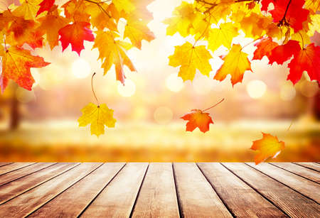 Wooden table top on blur autumn background. Autumn golden abstract background with bokeh light and colorful leaves.