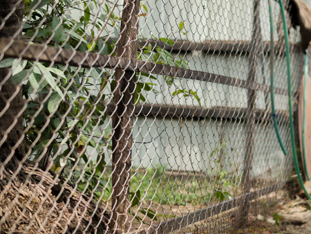 color photo of chain link fence also referred to as wire netting