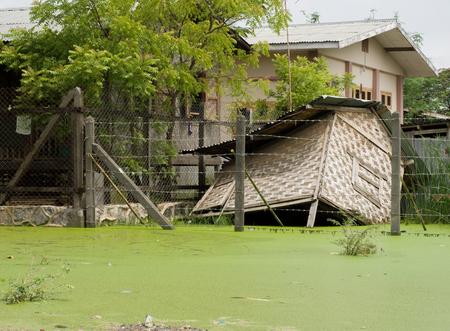 drizzling rain: HUT SUBMERGED IN MUD IN MANDALAY, MYANMARBURMA