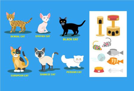 flat cat set