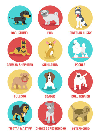 dogs icon set