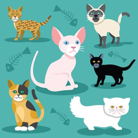 gato caricatura: Gatos vectoriales iconos planos Set Vectores