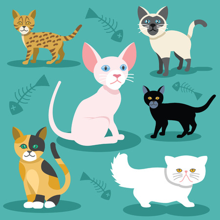 white cat: Vector cats flat icons Set Illustration
