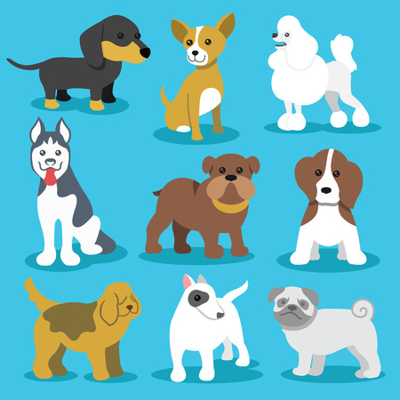bullterrier: Vector Dogs Flat Icons Set Isolated on Blue Background