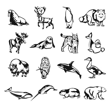 Northern animals vector black doodle outline pictogram icon set