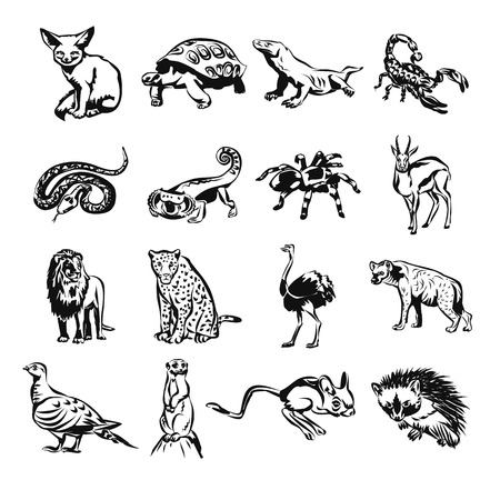 hoofed mammal: Desert animals vector black doodle outline pictogram icon set