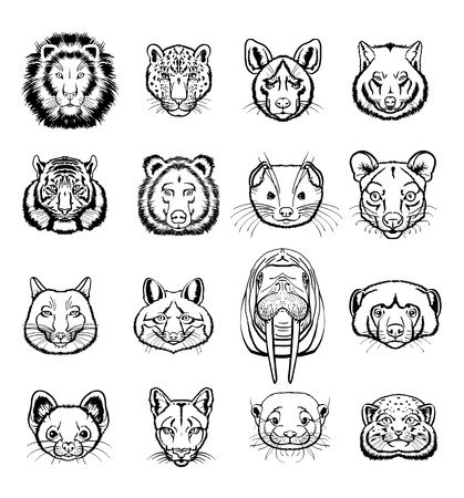 lynx: Vector predators animals black icon set Illustration