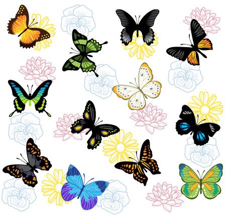 papillon: Vector papillon fond Illustration