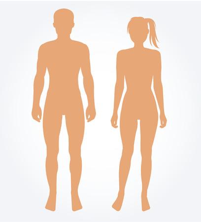 El hombre y la plantilla del cuerpo de la mujer. Ilustración vectorial