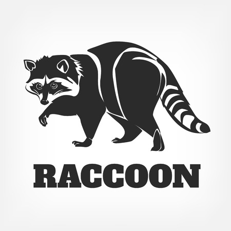racoon: Vector raccoon black illustration Illustration