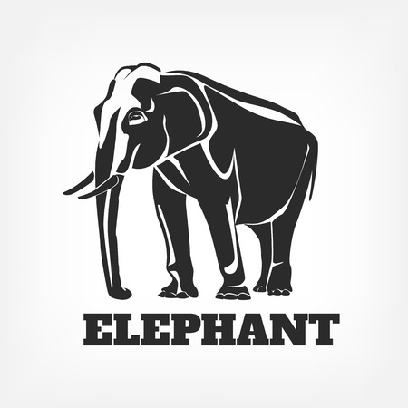 animal silhouettes: Elephant vector black illustration