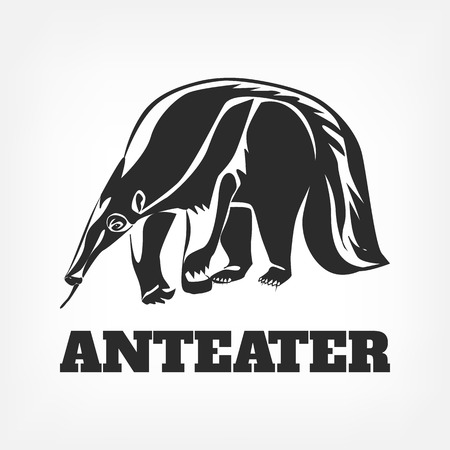 a report on the anteaters Anteaters now officially receive the obli seal of approval anteater has last laugh on tormentor log in to reply report user.