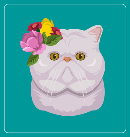fluffy ears: Cat face. Vector flat illustration