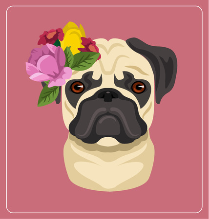 pug dog: Vector pug dog portrait flat illustration
