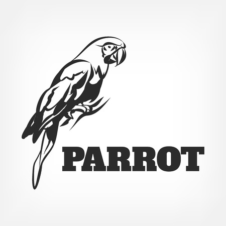 exotic: Vector parrot black icon illustration