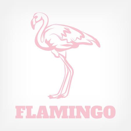 flamingos: Vector flamingo icon illustration Illustration