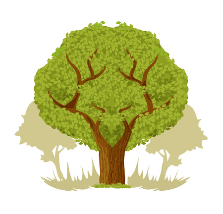 big tree: Vector big tree flat illustration