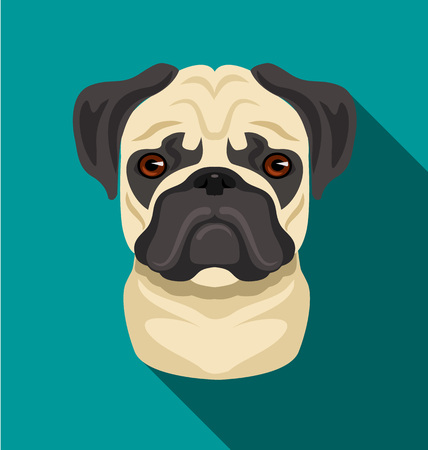 pug dog: pug dog flat cartoon illustration