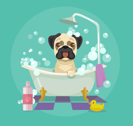 cartoon bathing: Dog grooming. Vector flat illustration