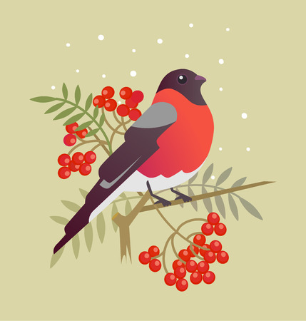 bullfinch: Bullfinch christmas bird cartoon art illustration Illustration
