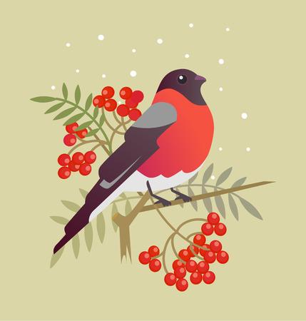 twit: Bullfinch christmas bird cartoon art illustration Illustration
