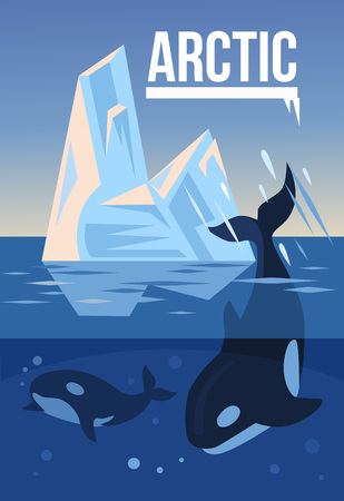 arctic zone: Arctic nature. Vector flat illustration