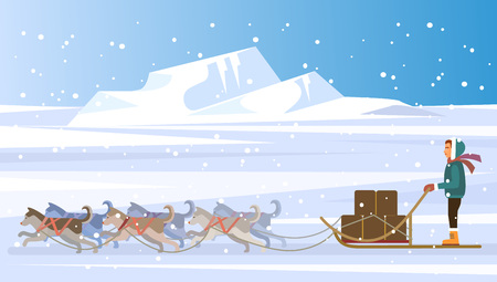 snow sled: Musher and dog sled team. Vector flat illustration