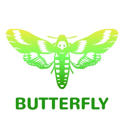 milkweed: Vector green mole color butterfly icon illustration