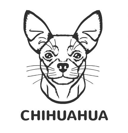cane chihuahua: Chihuahua icona vettore nero illustrazione