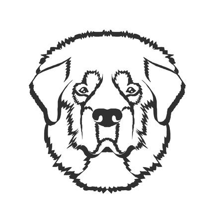 breed: Dog head vector black  icon illustration
