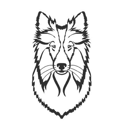 collie: Collie vector black icon  illustration