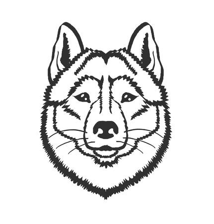 Husky dog vector black icon  illustration Vettoriali