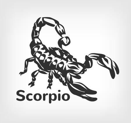 predatory insect: Scorpion vector black icon  illustration