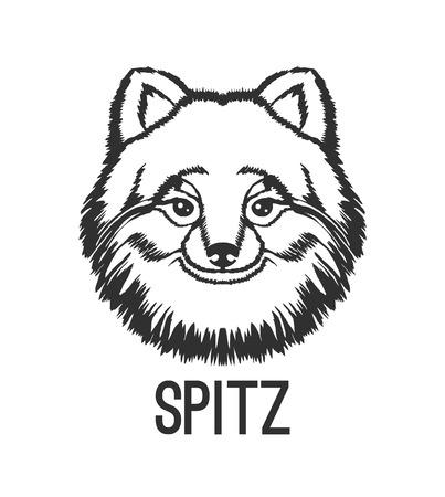 sable: Spitz vector black  icon illustration Illustration