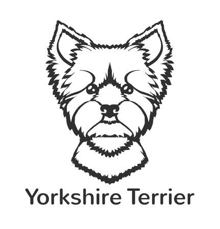 yorkshire terrier: Yorkshire terrier. Vector black icon  illustration Illustration