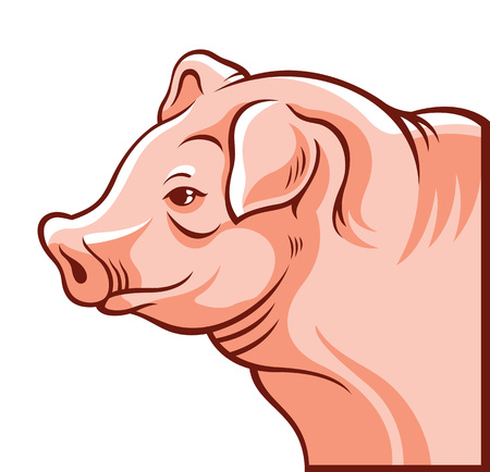 corral: Pig portrait. Vector cartoon illustration
