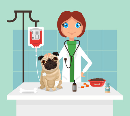 Veterinarian. Vetor flat illustration Illustration