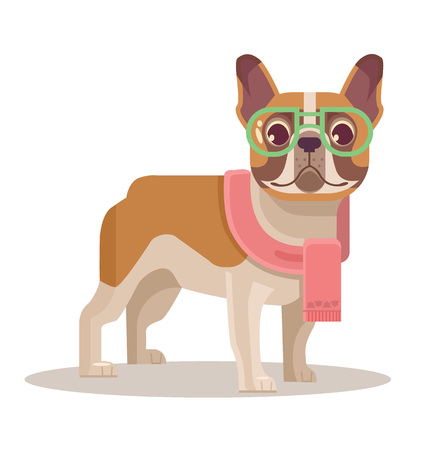 french bulldog: French bulldog flat cartoon illustration