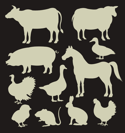 animal fauna: Vector farm animal white silhouettes icon set Illustration