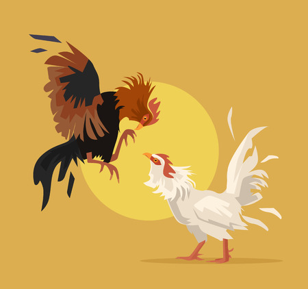 Two cocks fighting. Vector flat cartoon illustration