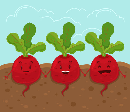 beet root: Beet grow underground. Vector cartoon flat illustration Illustration