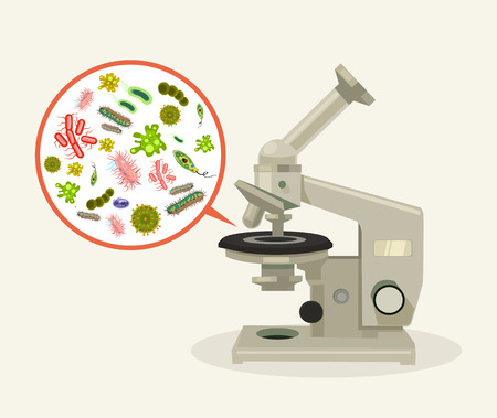 dysentery: Microorganisms under microscope. Vector flat cartoon illustration
