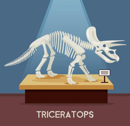triceratops: Triceratops bones skeleton in museum exhibition. Vector flat cartoon illustration Illustration