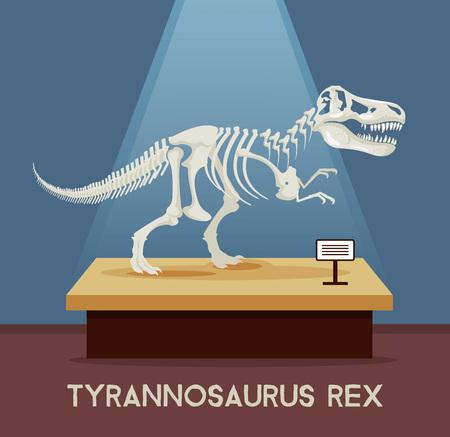 Tyrannosaur Rex ossa dello scheletro in mostra museo. Vector piatta cartone animato