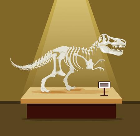 rex: Tyrannosaur Rex bones skeleton in museum exhibition. Vector flat cartoon illustration. Dinosaurs museum