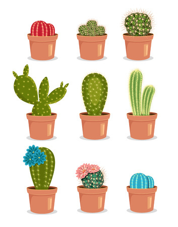 potted plant cactus: Blooming cactus. Cactus with flower. Cactus in pot. Colored cactus. Vector flat cartoon icon illustration set